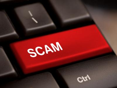 Read Article - Domain Name Scams
